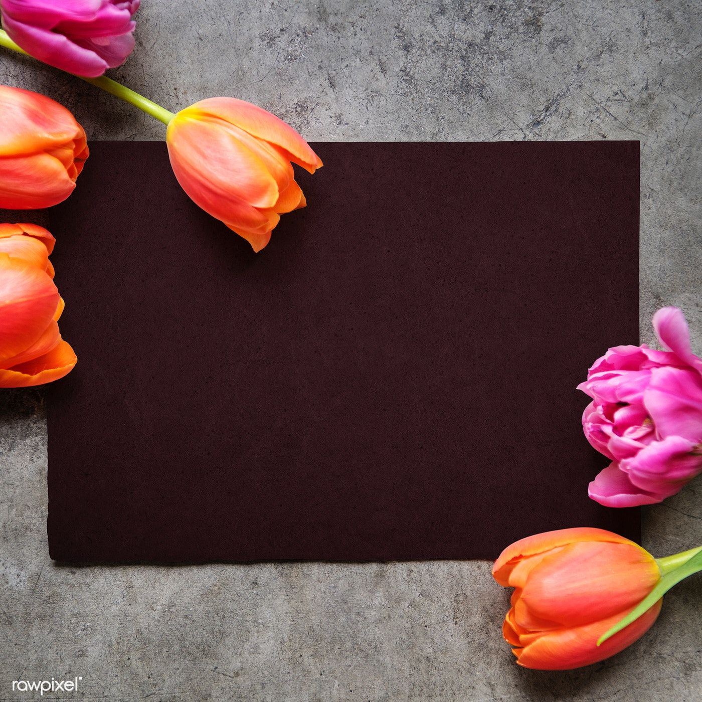 Happy Anniversary Card With Tulips And Peony Free Image By Rawpixel Com Jira Happy Anniversary Happy Birthday Art Happy Anniversary Cards
