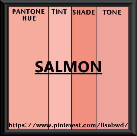 Pantone Seasonal Color Swatch Salmon Color Thesaurus Color Wheels
