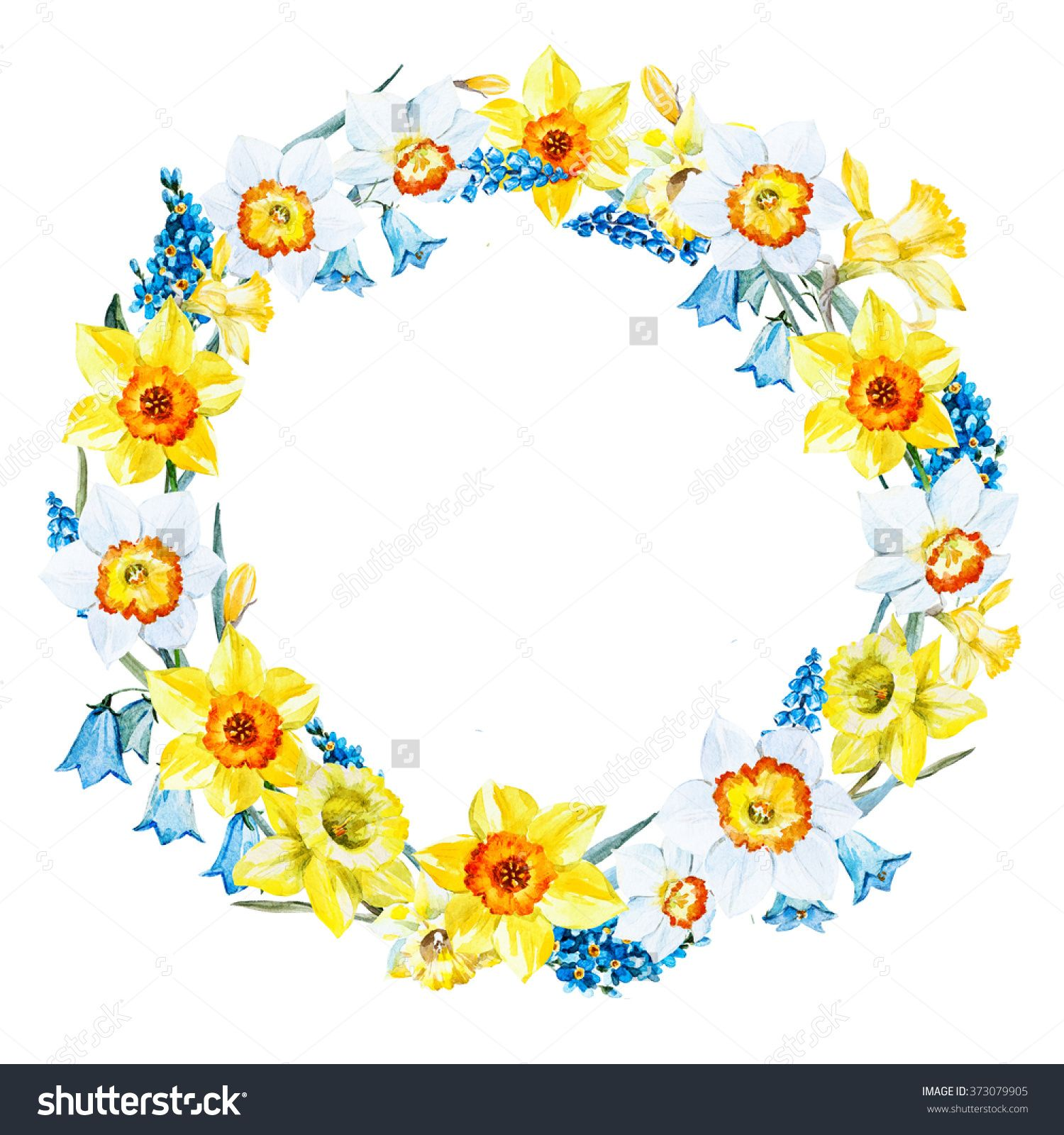 Httpsshutterstockpic 373079905stock photo watercolor watercolor spring flower wreath garland white and yellow daffodil blue flower nezabuka muscari retro card izmirmasajfo Gallery