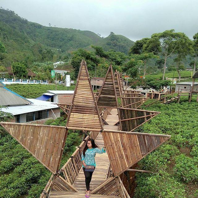 Lokasi dan Harga Tiket Masuk Taman Bintang Kemuning