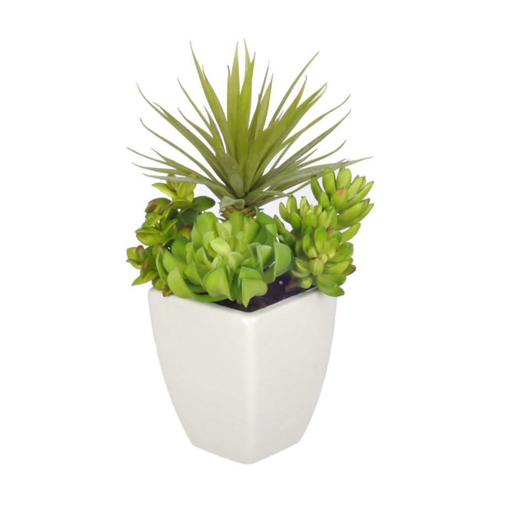 Artificial Yucca Desk Top Plant in Planter (With images