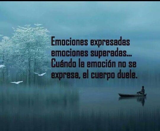 Expresar Emociones Enfermedades Y Emociones Frases