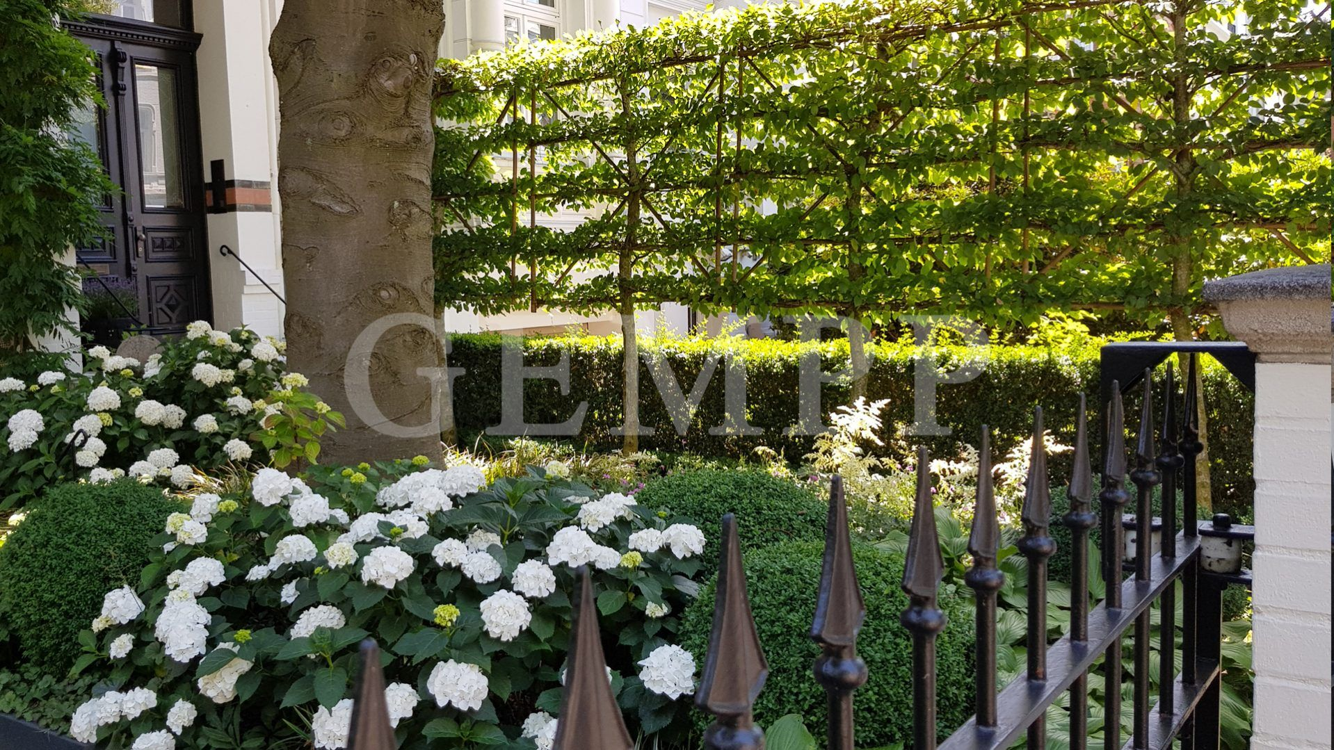 Elegante Vorgartengestaltung Moderne Gartengestaltung
