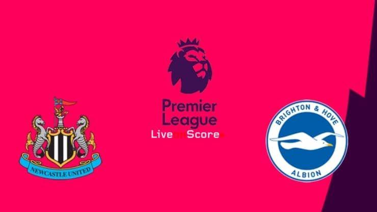 Newcastle Vs Brighton Preview And Prediction Live Stream Premier League 2019 2020 Premier League Manchester City Newcastle United