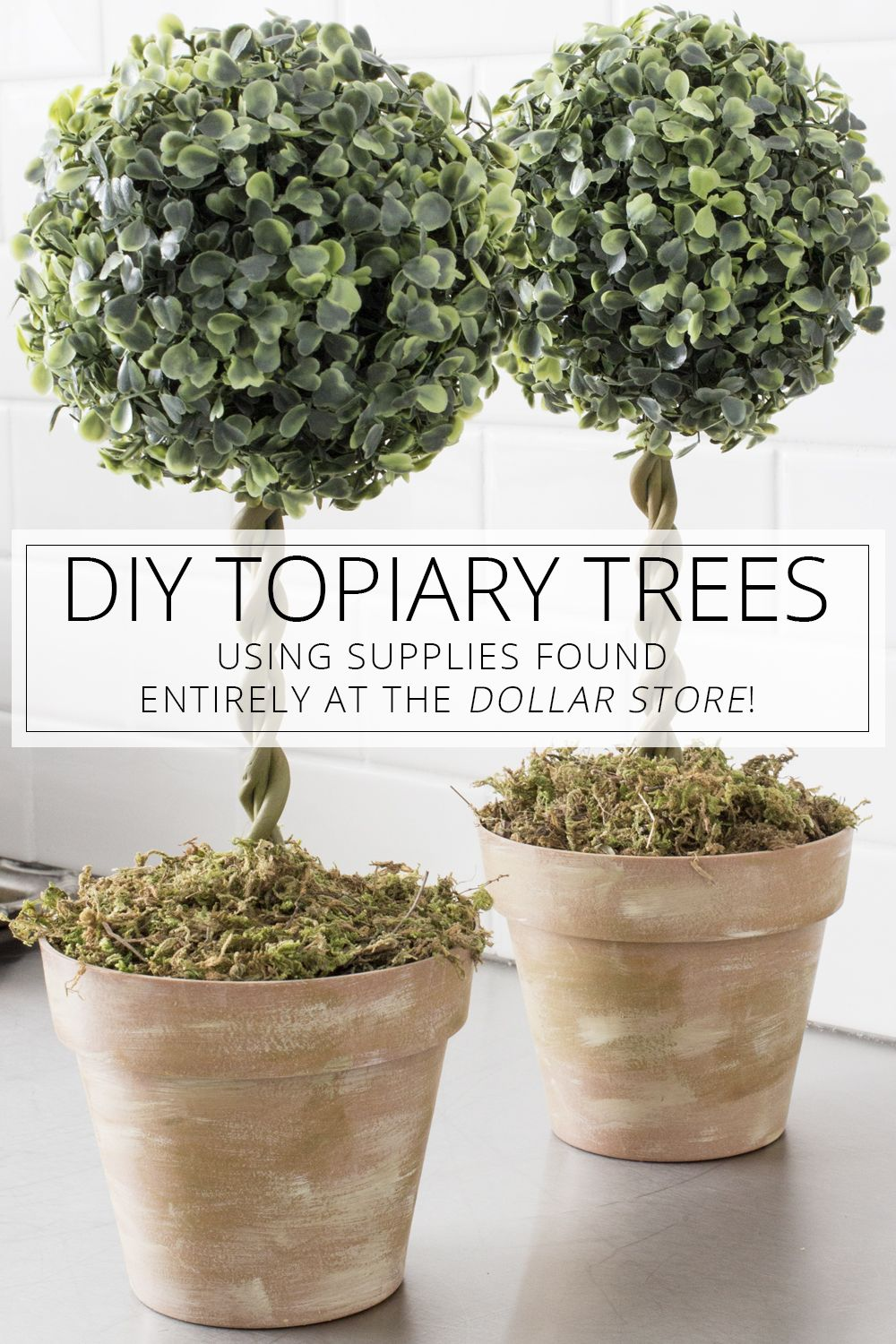 Diy Topiary Trees From Dollar Store Supplies  Topiary Trees