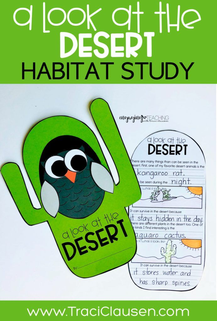 Plant and Animal Habitats Desert, Rainforest