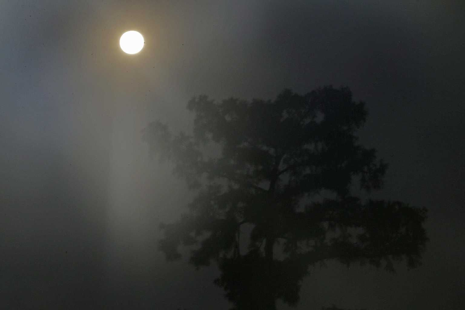 The larger-than-normal full moon referred to as Supermoon is seen setting beyond a tree near fishing camps in Akers, La., Sunday, June 23, 2013. (AP Photo/Gerald...