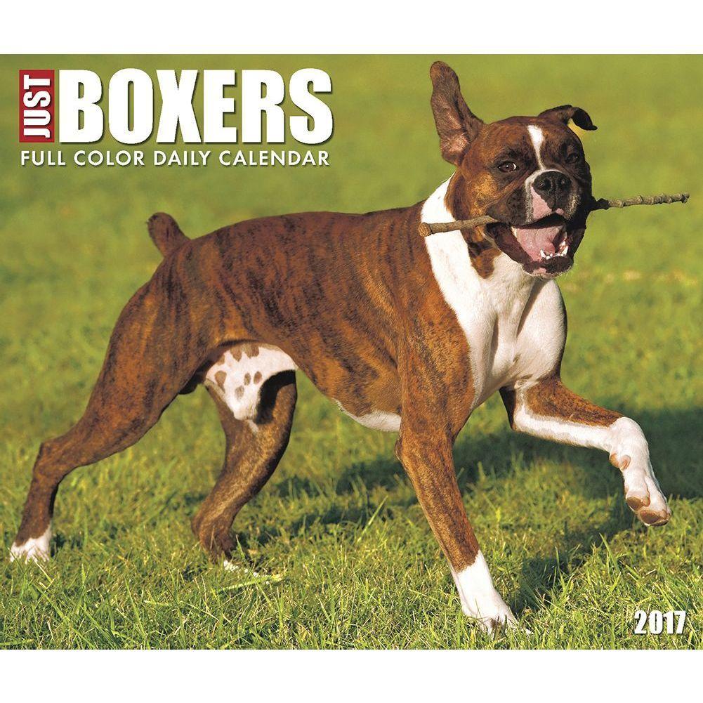 Just Boxers 2020 Desk Calendar Boxer, Calendar 2017