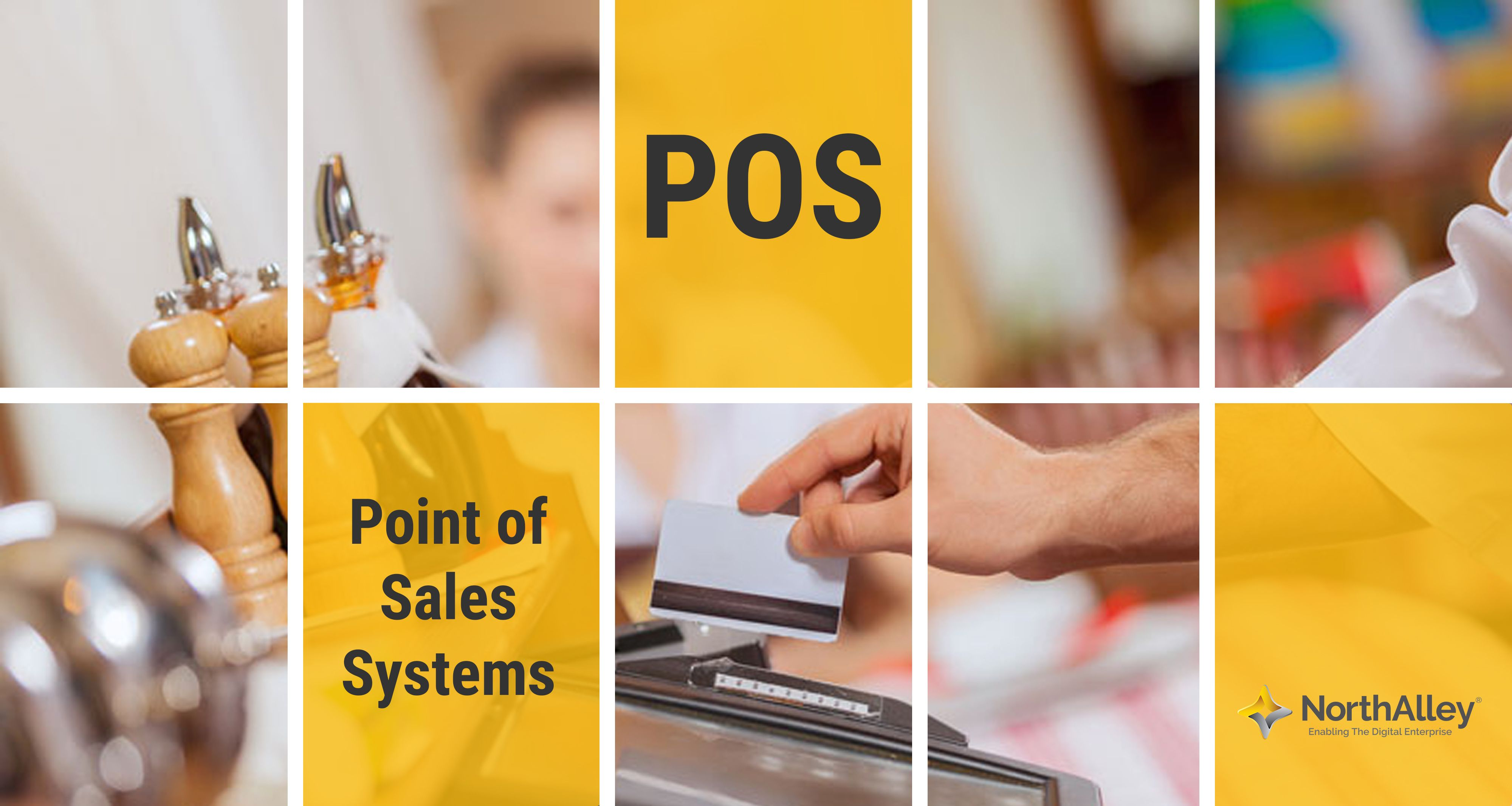 NorthAlley's Point of Sales System helps to optimize IT resources and  fulfill the needs of the business sector .
