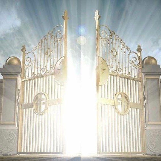 Image result for fancy hidden trap door designs Hidden