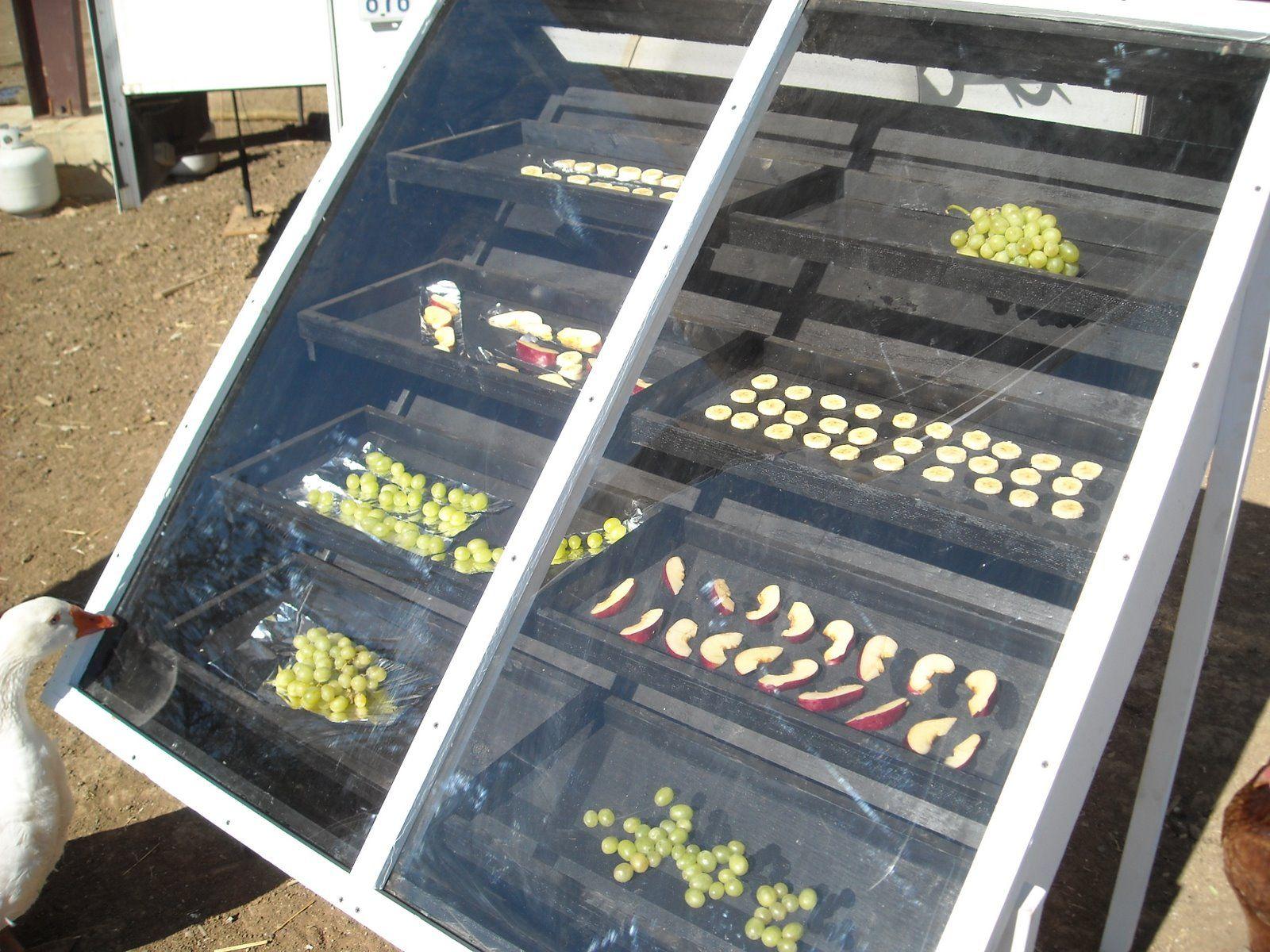 Food drying rack, air, solar.. Look at that goose :-D