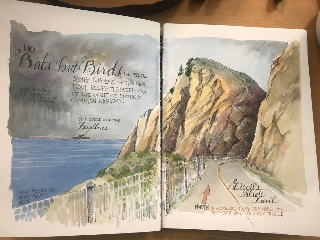 Pin By Karen Colson On Sketchbooks Nature Journal Watercolor