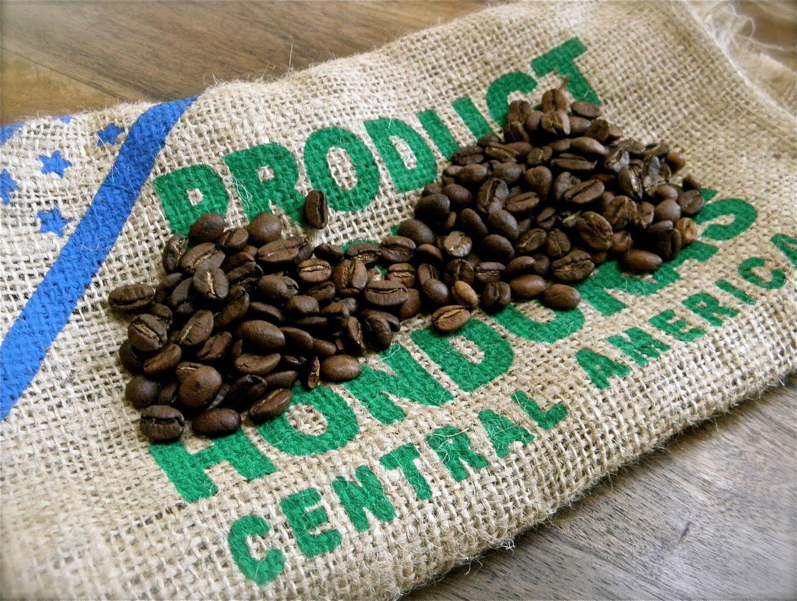 Honduras Fto Expensive Coffee Coffee Beans Best Organic Coffee