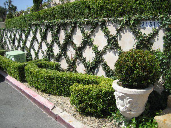 Wie Gestalte Ich Meinen Garten Gartenzaun Kletterpflanzen Büsche