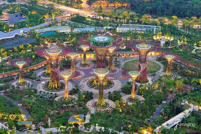 Pretty nice Singapore Garden by the Bay Amazing Photos