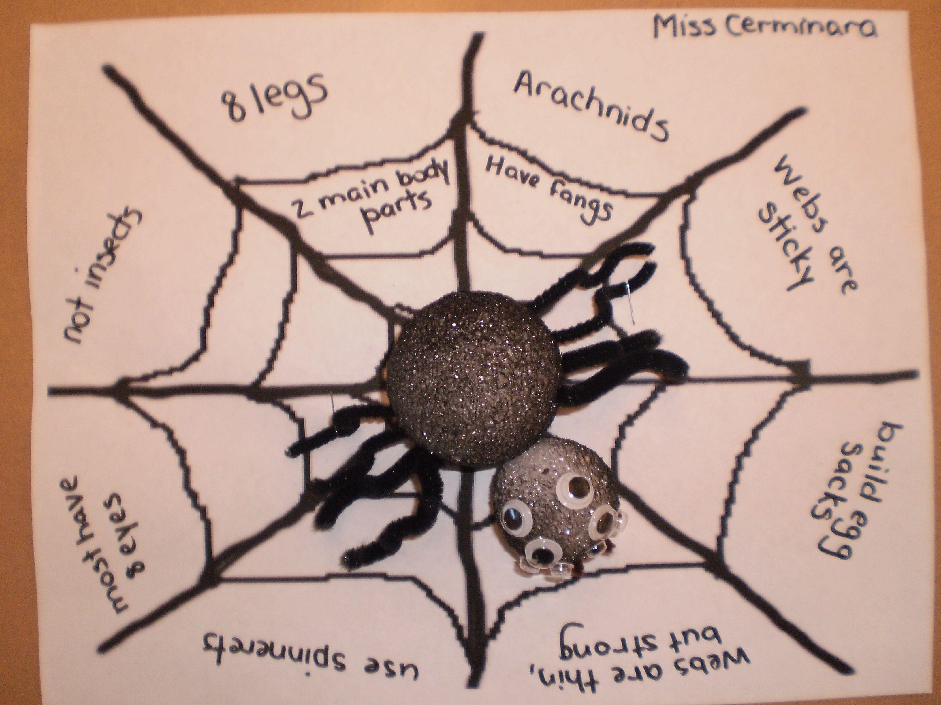 Spider Unit Craft
