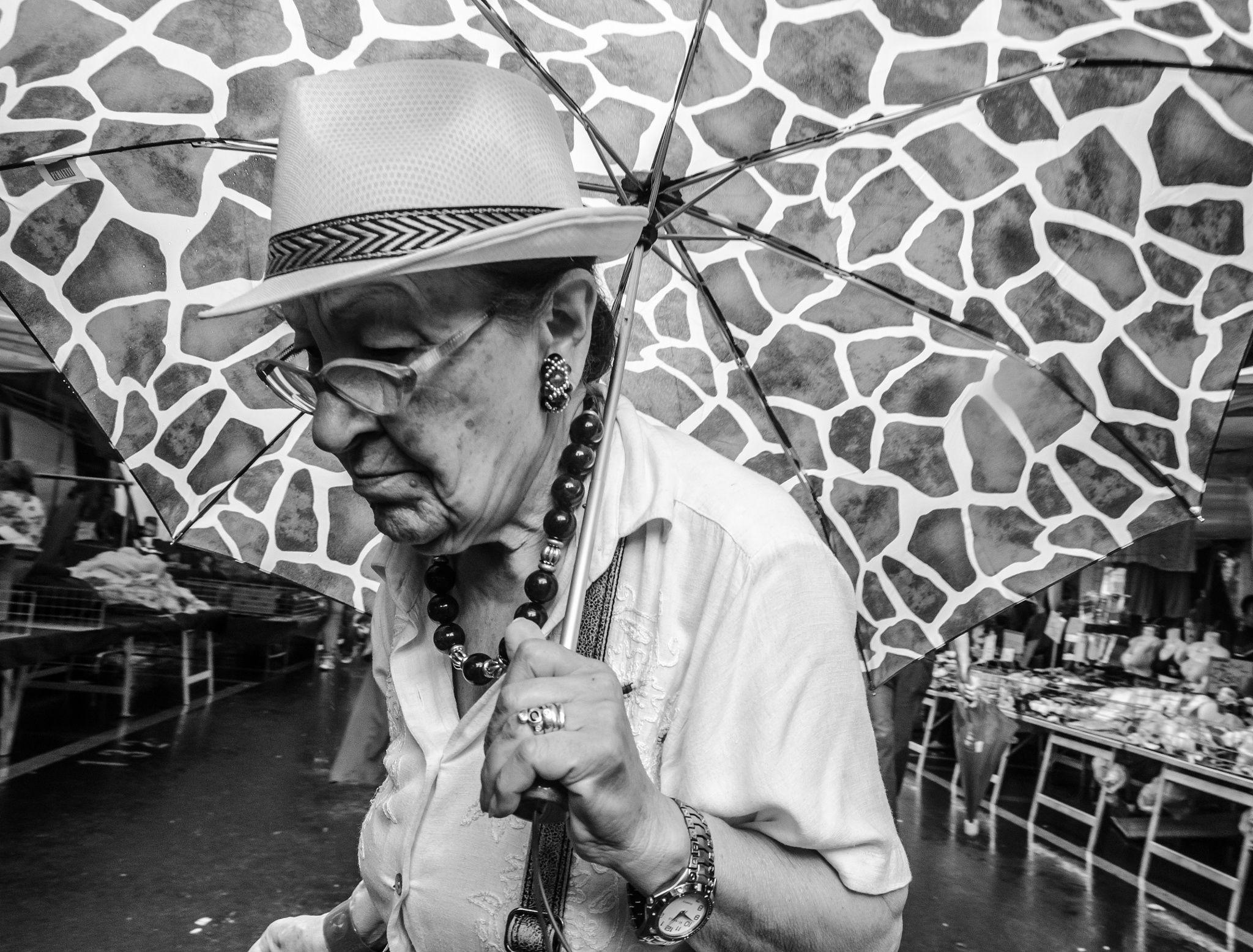 Fotograf The giraffe umbrella von Daniel Hoffmann auf 500px