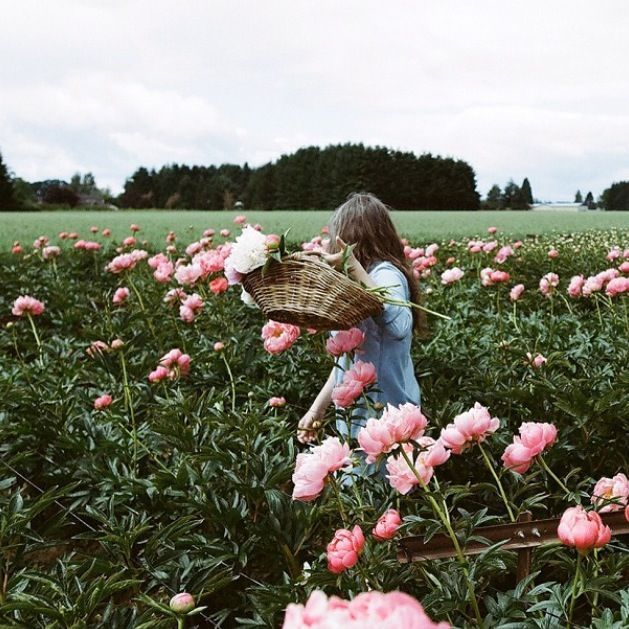 Dimple Moment / March mood board #pink #flower #girl #sweet #moment
