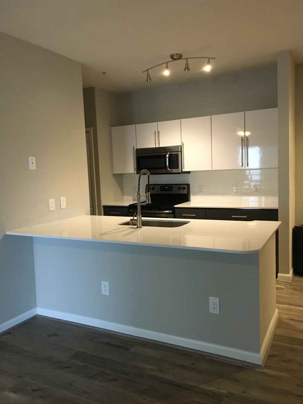 Newly Renovated    Brand New Stainless Steel Appliances. White Quartz  Countertops. Vinyl Wood