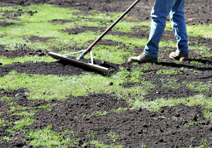 Top Dressing Lawn: Benefits and Advice - Plant for Success