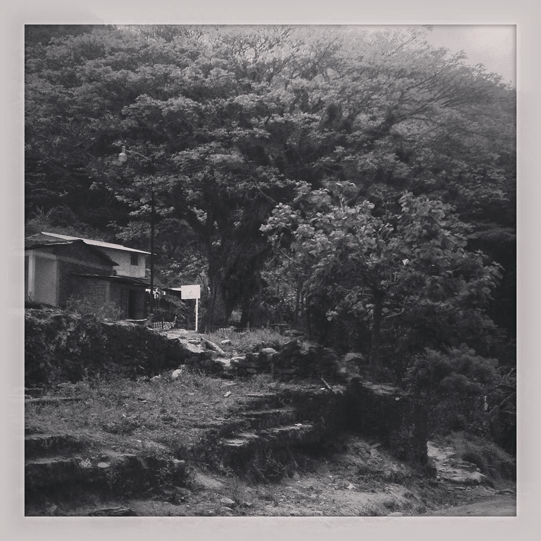 Gorgeous capture by maresmad #landscape #contratahotel (o) http://ift.tt/1VT6o77 te extrañe me hiciste falta. No quiero decírtelo pero aquí te lo escribo por si el destino quiere que lo leas.  #Surise #Dawn #Traveling #Instanature #Landscape #Nature #Tree #Amanecer #Paisajes #Naturaleza #Arbol #Architecture #Traveling #House #Casas #Arquitectura