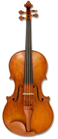 I Can T Imagine Life Without My Viola Haha Definitely One