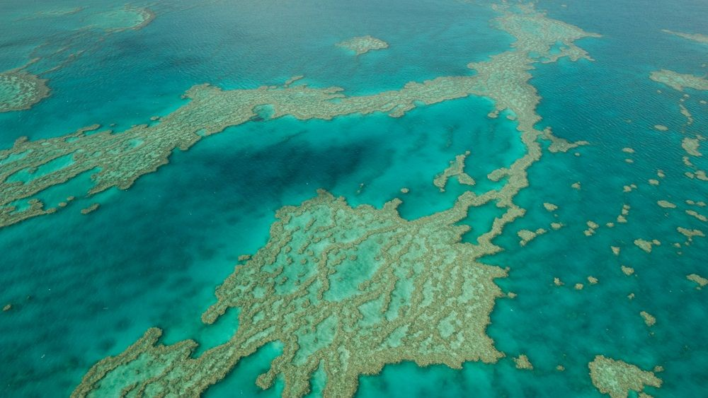 This Is A Portion Of The Great Barrier Reef Seen From Space