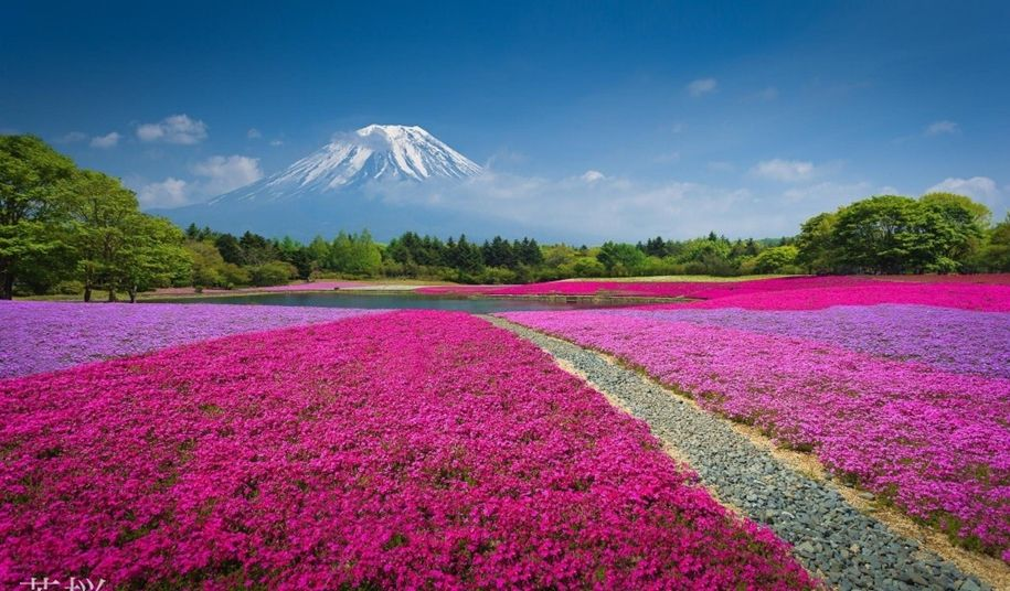 Natural wonders of Japan 14