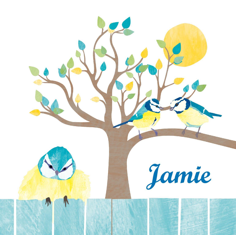 Vrolijk geboortekaartje voor een zoon met kleurrijke tekening van pimpelmeesjes in boom en lief kleintje op schutting. Pas het kaartje naar wens aan op vrolijkegeboortekaartjes.nl