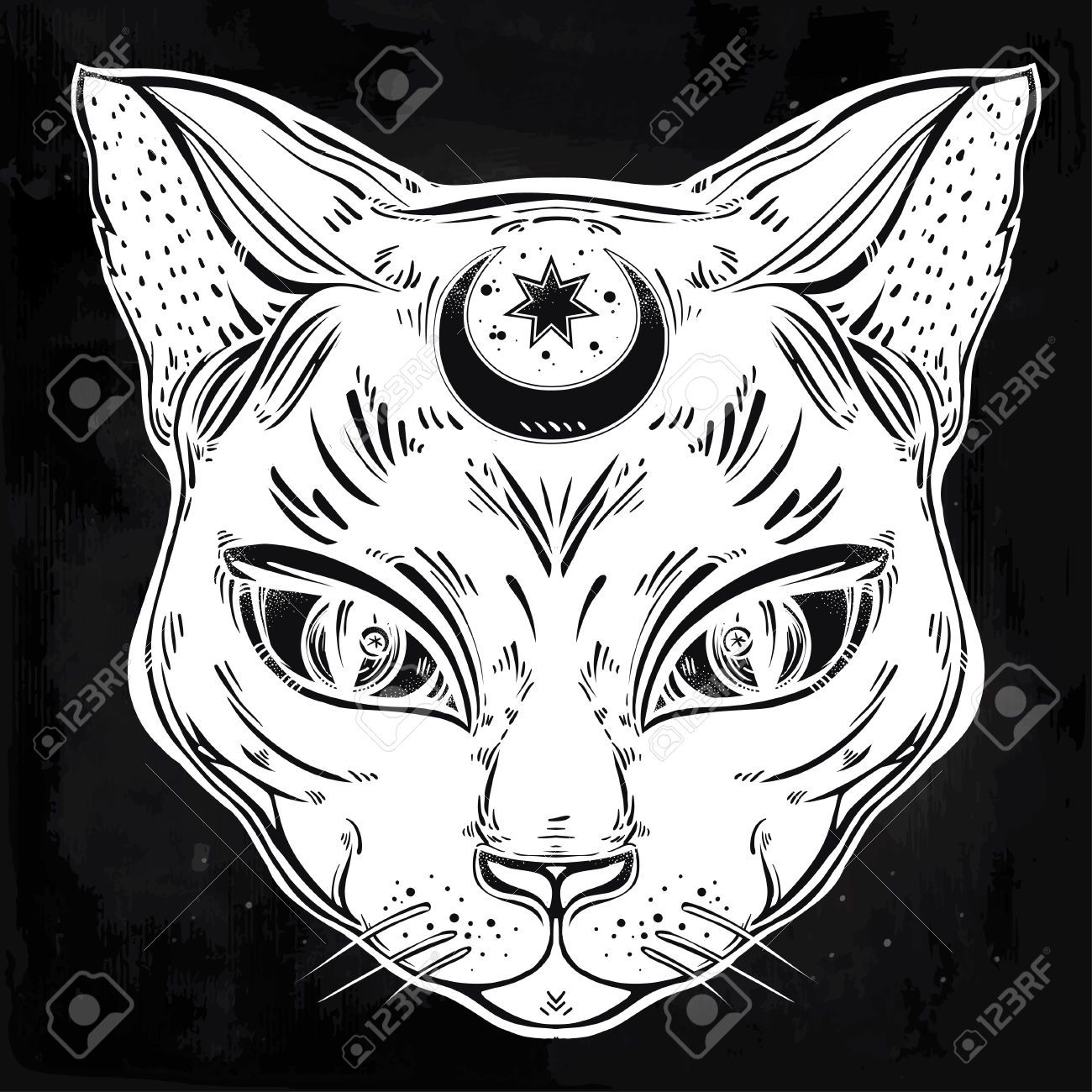Image result for three eyed cat