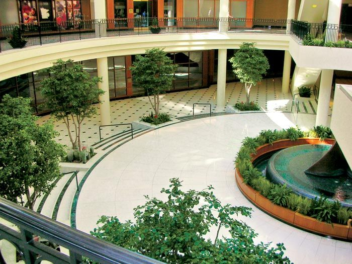 High Quality Your Interior Landscaping Design Plan Will Include Product Specification  Sheets That Detail The Or Artificial Plants Proposed, As Well As Decorative  Planter ...