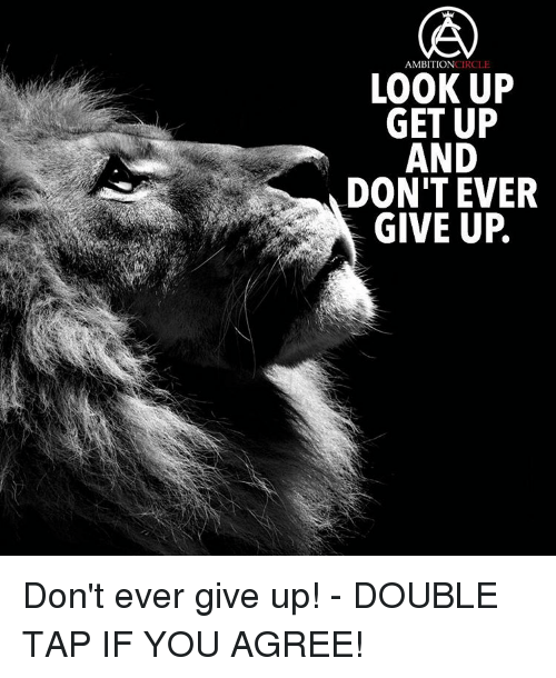 Image Result For I Give Up Meme I Give Up Meme Dont Ever Give Up I Give Up