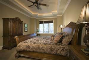 ceiling tray lighting. tray ceiling with rope lighting basement pinterest ceilings and