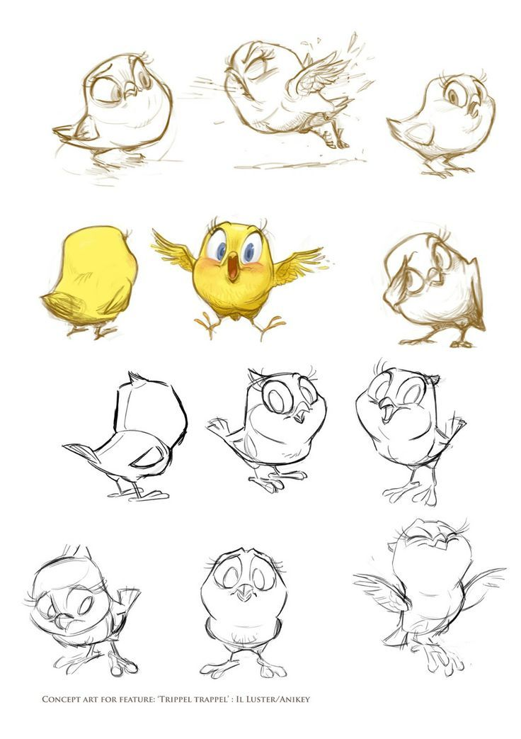 cute little pudgy bird canary character sketches by wouter tulp