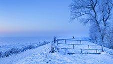 Frozen 2 Sselmeer Netherlands Desktop Themes Background Pretty Wallpapers