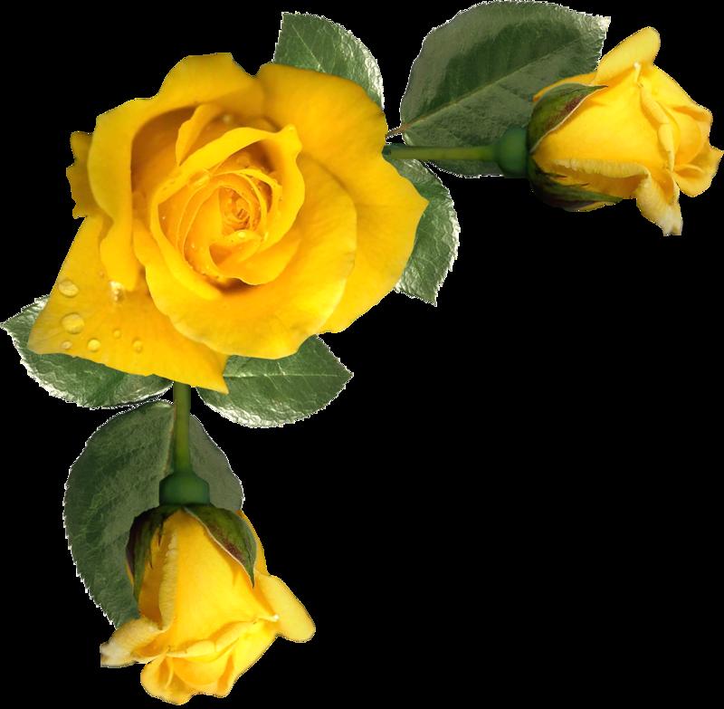 "Photo from album ""rose corners"" on Цветы, Роспись по"