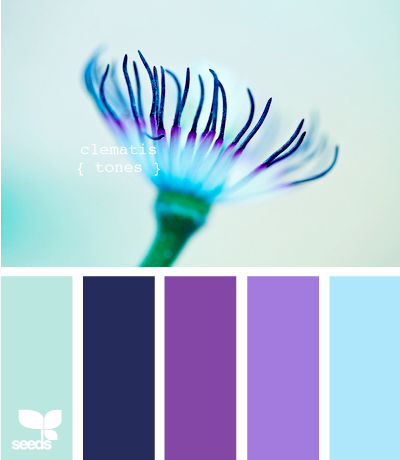 Design Seeds' Palette Search- pick a color and search. Finds matches from photo palettes. Here, clematis tones.