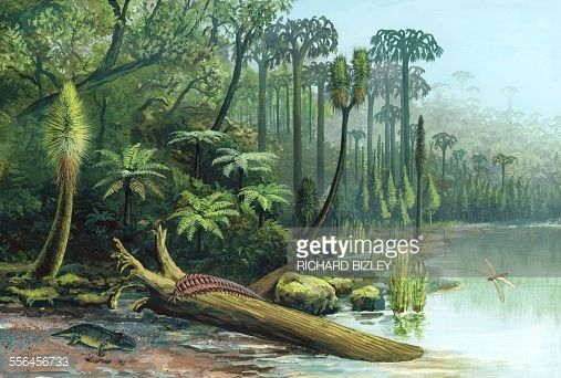 Carboniferous Swamp With Giant Millipede Black Marsh Flora