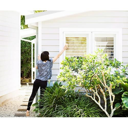 House Plants For Shady Rooms: How To Prep For A House Inspection Room By Room