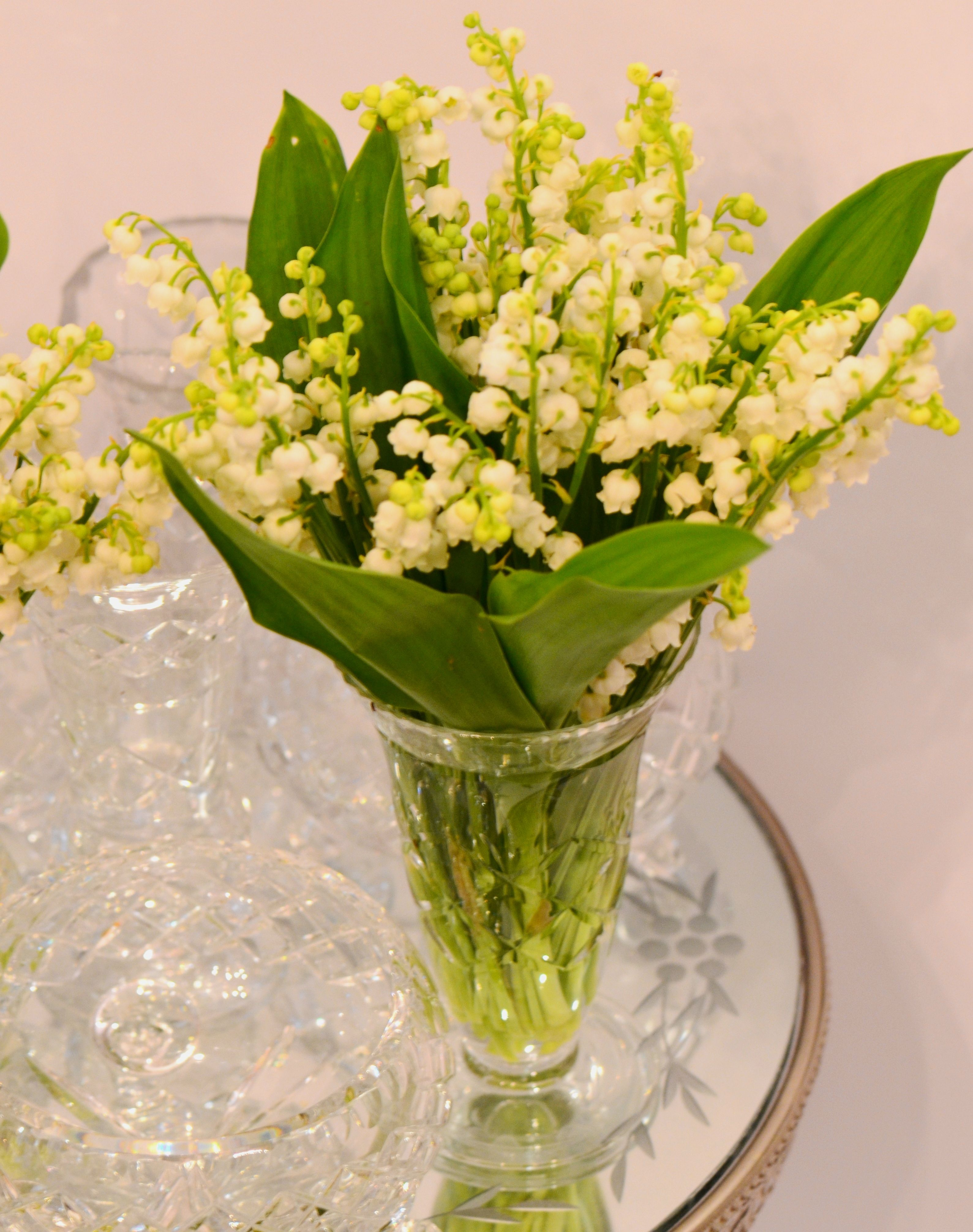 Flower of the month the arrangement of lily of the valley has been flower of the month the arrangement of lily of the valley has been created by alice izmirmasajfo