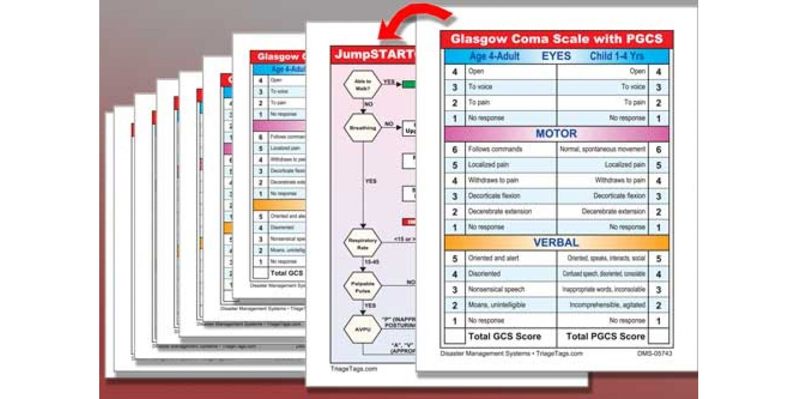 Glasgow Coma Scale Chart Dms