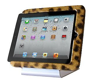 Fun and useful product. Need a docking station for your
