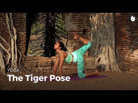 learn the tiger pose  vyaghrasana  yoga  youtube  yoga