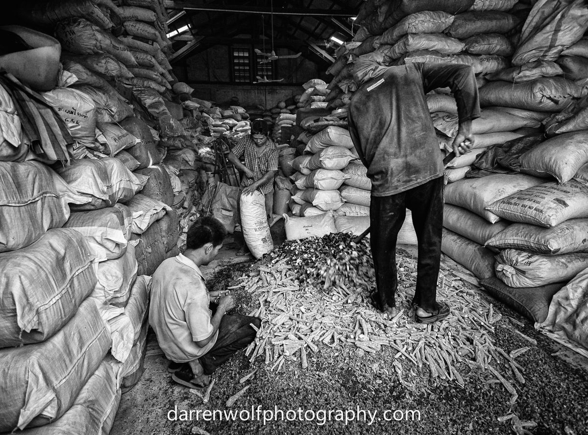 workers mixing herbs in mass at the warehouse
