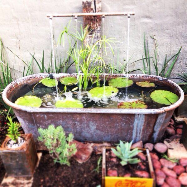 Feature bath google search old porcelin bathtub water for Small garden feature ideas