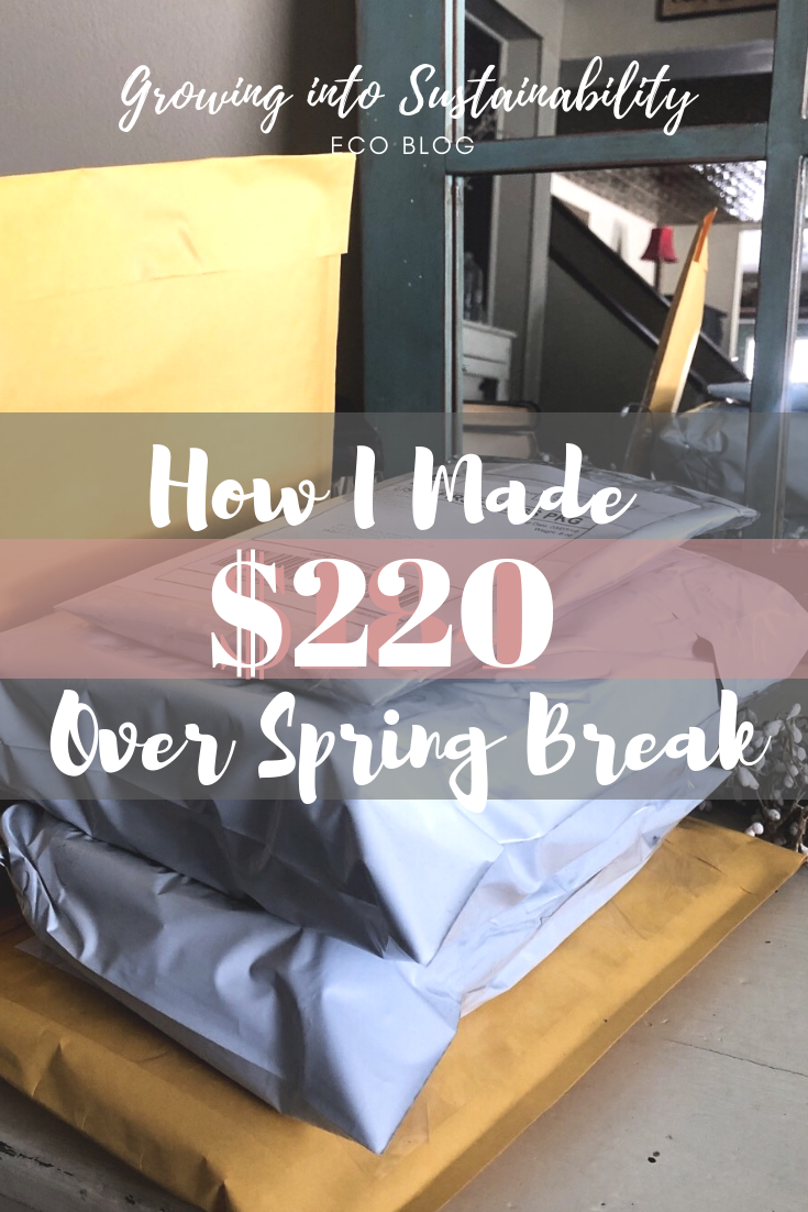 How I Made 220 Over My Spring Break Spring Break Spring About