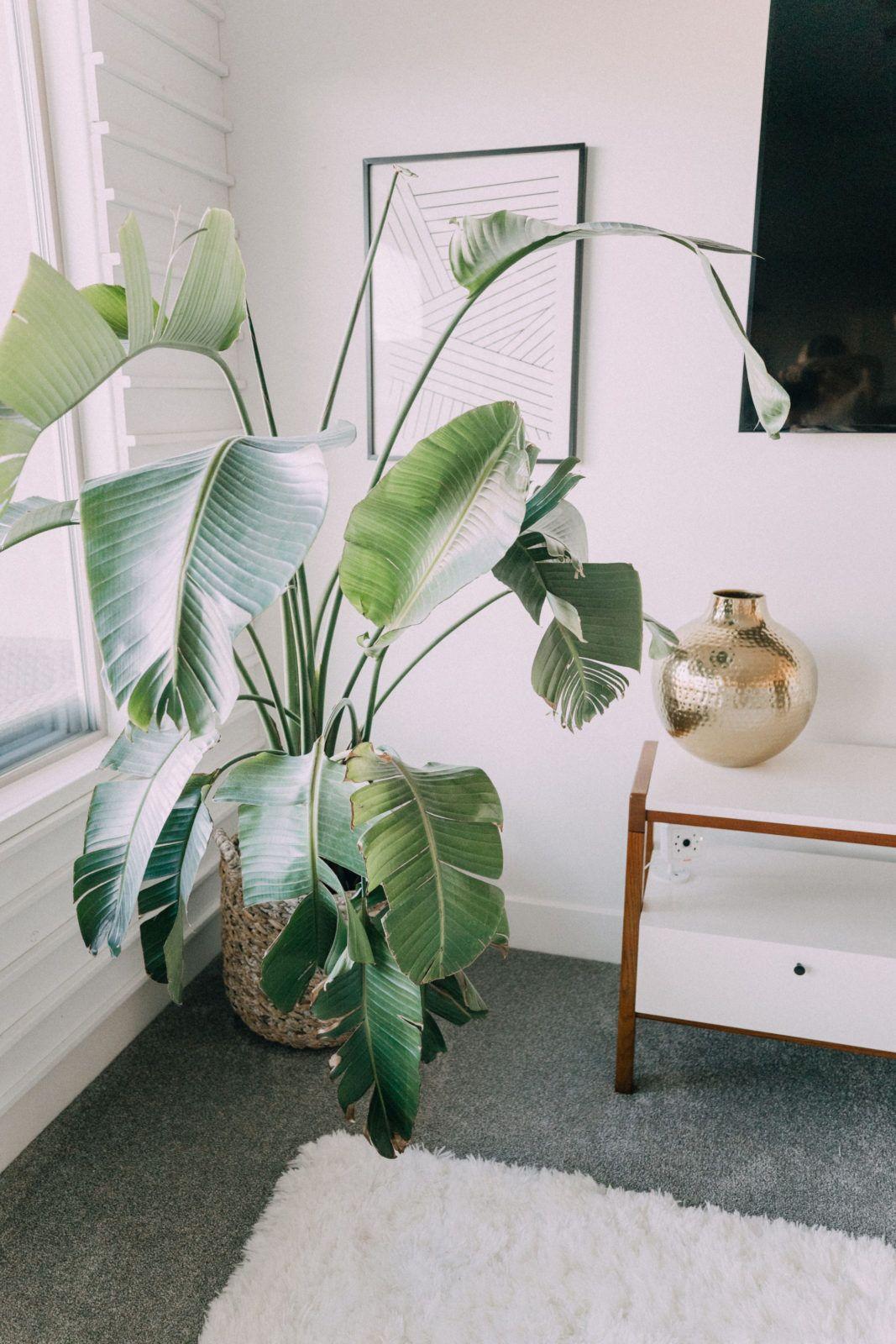 House Tour 2018 Grun Interior Pflanzen House Home Und Home Decor