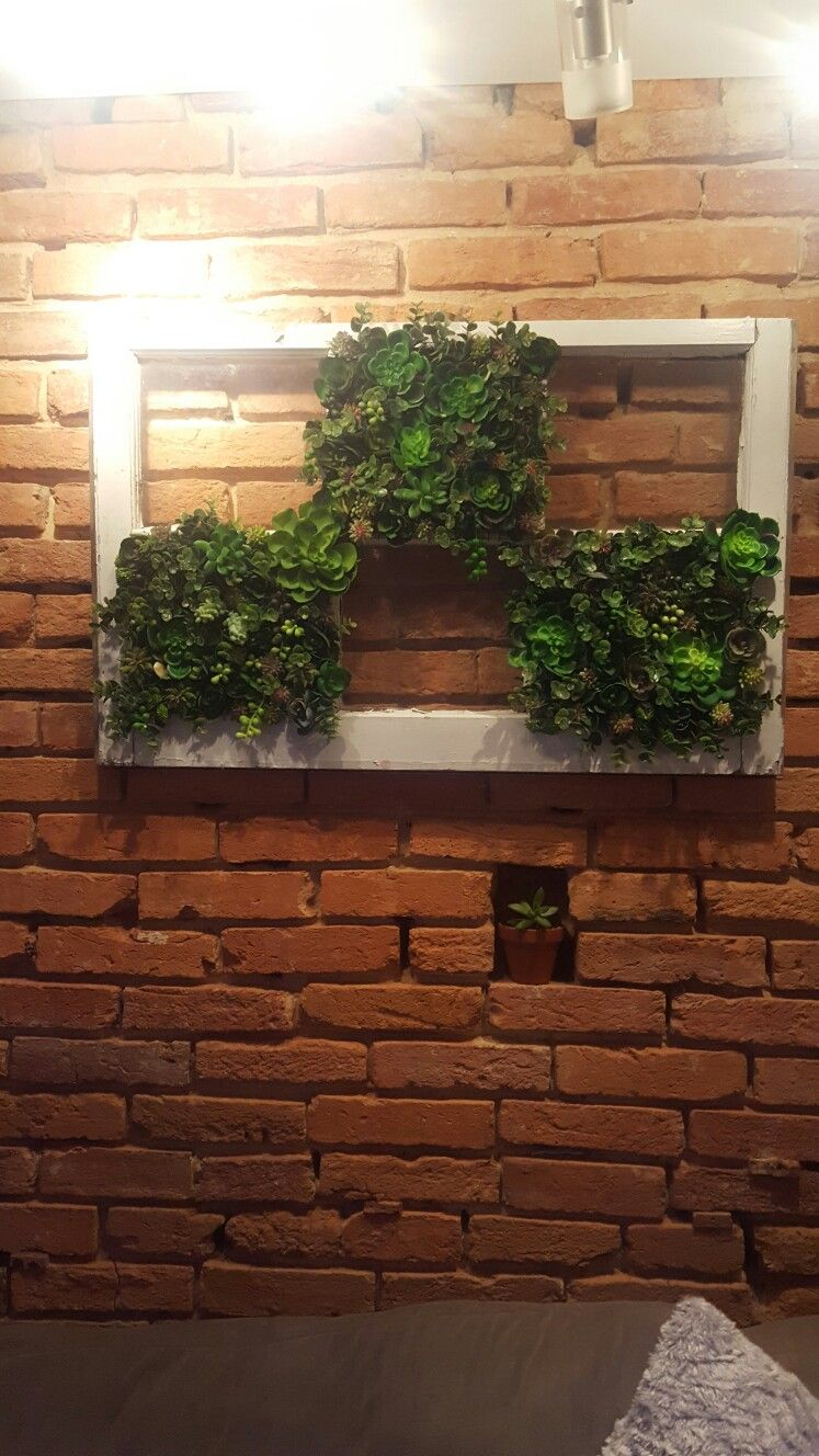 Succulent garden in an old window frame. Take out glass and nail or ...