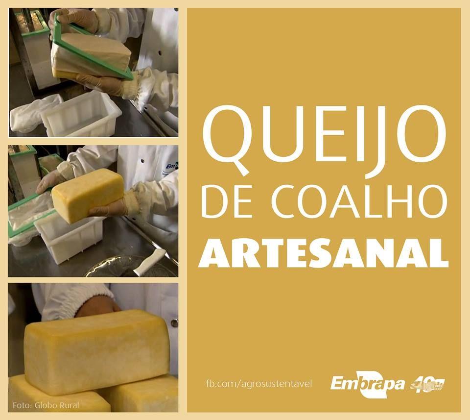 Produção artesanal de queijo de coalho