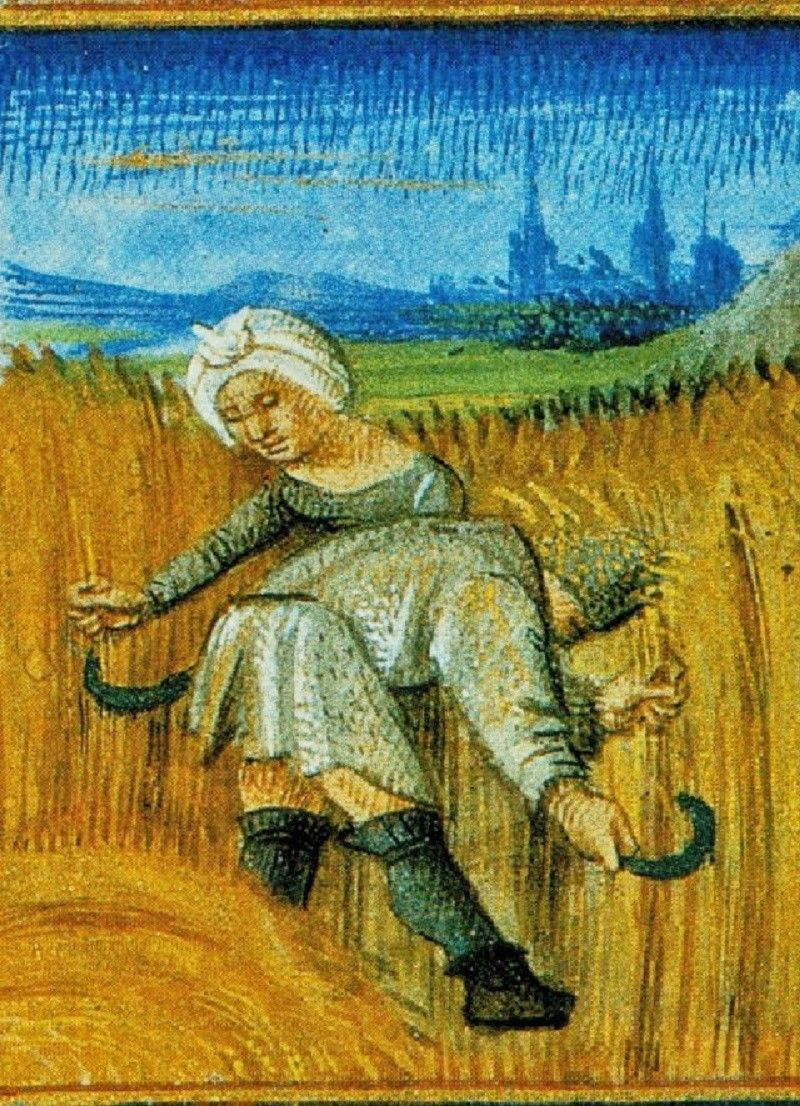 It's About Time 1400s Agricultural Calendar illustration